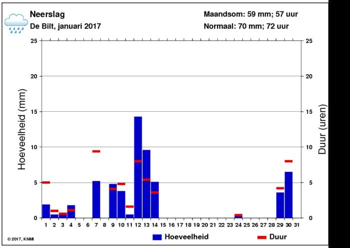 Neerslaggrafiek van januari per dag