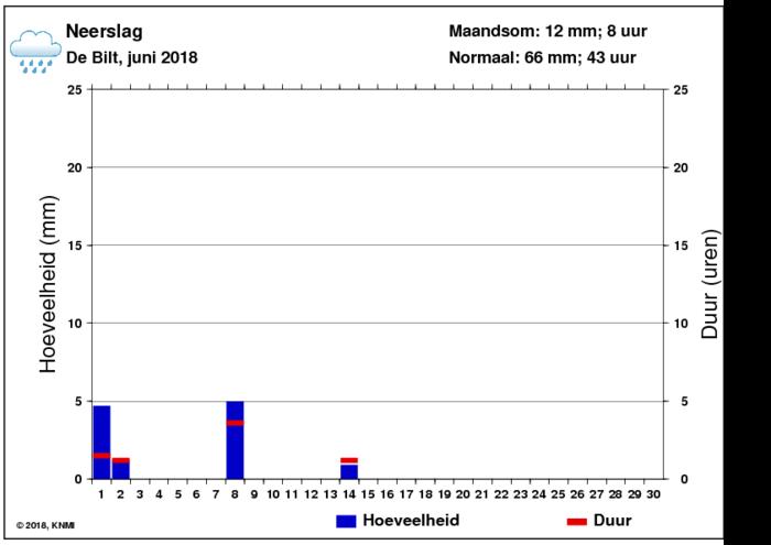 Neerslaggrafiek van juni per dag