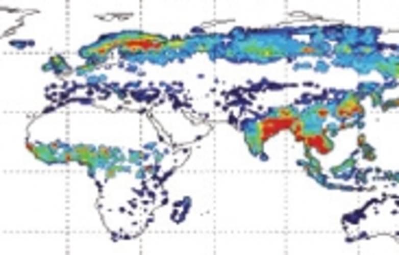 Wetland emissions