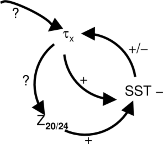 Fig. 4 Veranderingen in de ENSO cyclus tussen wind stress (t), thermoklien diepte (Z20/24) en oppervlaktewater temperatuur (SST).