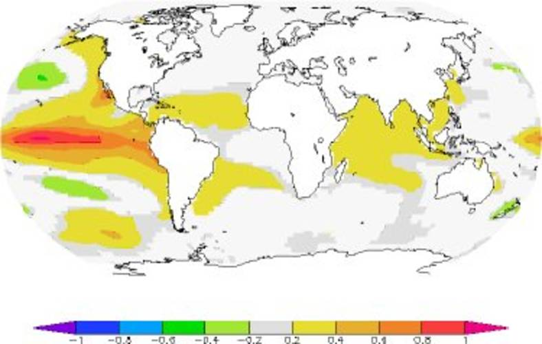 Figure 2. Average surface temperature anomaly of the ocean three months after an El Niño episode of 1 ºC (NCDC ERSST v3b observation). The ocean cools through extra radiation and hence decreases the ocean heat content.