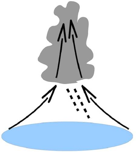 Figuur 3. Conceptuele weergave van een convectieve buienwolk (zie tekst voor uitleg).