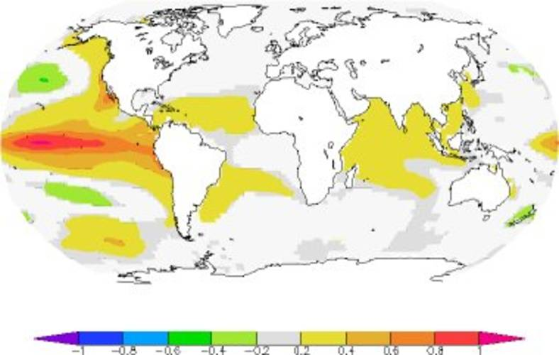 Figuur 2: Gemiddelde temperatuurafwijking van de oceaan 3 maanden na een El Niño periode van 1 ºC (NCDC ERSST V3b waarnemingen). De oceaan koelt weer af door uitstraling en verliest zo warmte.