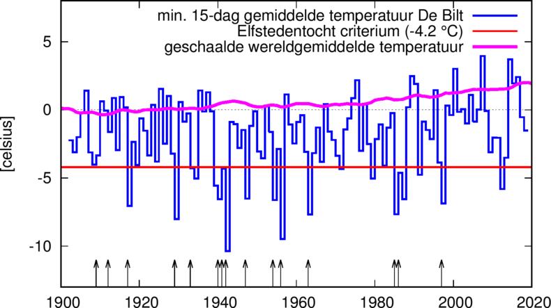 grafiek met laagste 15-daags gemiddelde daggemiddelde temp. in De Bilt (blauw), temp. criterium (rood) en de geschaalde wereldgemiddelde temp. met een 4-jaar lopend gemiddelde (paars). De pijltjes geven de jaren aan waarin een Elfstedentocht verreden werd