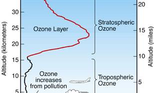 Figuur V1-2: Ozon is aanwezig in de lagere atmosfeer vlak boven het aardoppervlak, genaamd de troposfeer, en hoog boven het aardoppervlak, genaamd de stratosfeer. Het meeste ozon bevindt zich in de stratosfeer, in de 'ozonlaag'. Verhogingen van de ozoncon