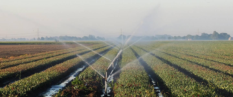 beregenen in de landbouw