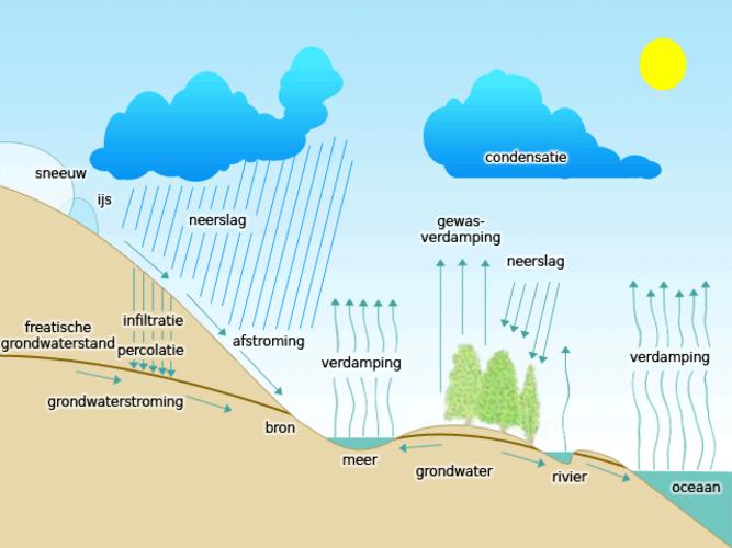Infographic van de hydrologische cyclus (Bron: Wikipedia)