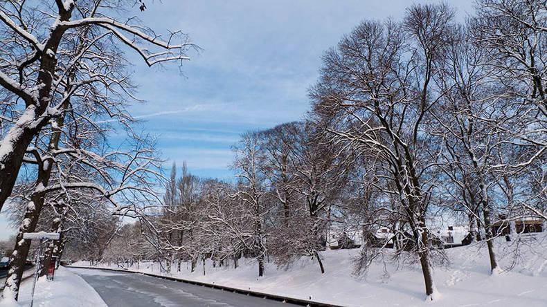 Winters weerbeeld met sneeuw