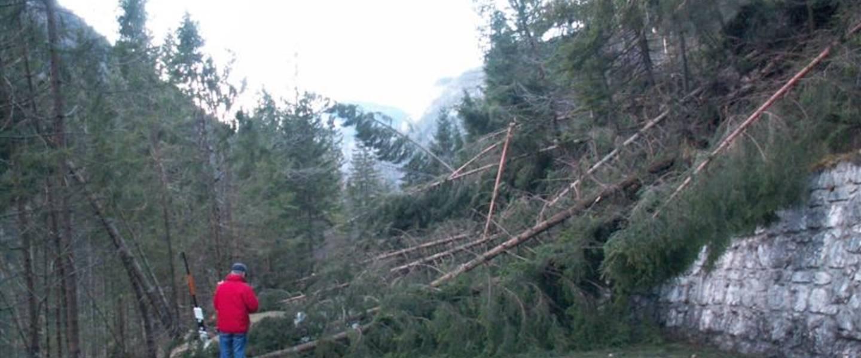 Kyrill op 18 januari 2007 was een van de zwaarste stormen van de laatste jaren (Bron: WPI/KNMI/Jacob Kuiper)