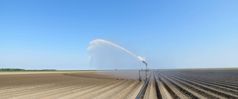 Sproei-installaties draaien tijdens droogteperiodes op volle toeren