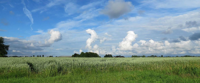 Verschillende wolkentypes (Bron: Jannes Wiersema)