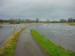 Overstroming van het riviertje de Mark bij Breda. Waar het witte paaltje staat loopt het ondergelopen fietspad waar, in de zomer, honderden mensen per dag gebruik van maken. (Bron: Frans Wildhagen, Prinsenbeek)