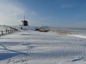 Sneeuw in Nederland (Bron: Jannes Wiersema)