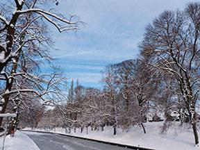 Winters weerbeeld met sneeuw (Bron: Raymond Sluiter)