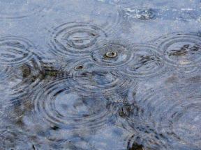 Regendruppels in een sloot