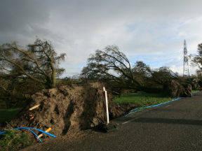 Stormschade (foto: Jannes Wiersema)