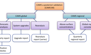 Fig 3: Overview of the activities in the CAMS validation sub-project.