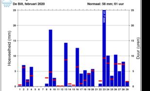 Grafiek neerslag De Bilt