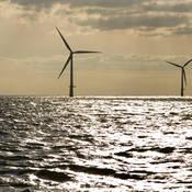 Dagelijks bekijken energieproducenten op grond van de data van het KNMI hoeveel windenergie opgewekt kan worden.