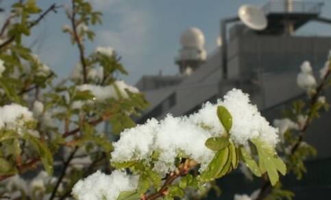 Sneeuw met Pasen