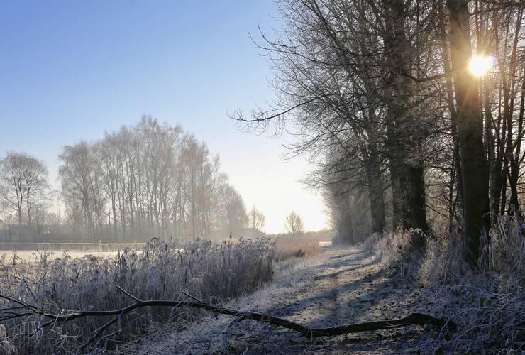 Januari  Was Een Vrij Koude Maand Met Vaak Rustig Winterweer Marian Van Keulen