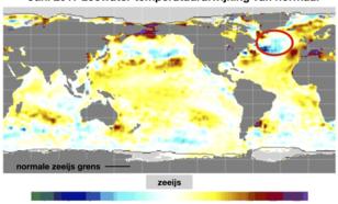 """Figuur 1: Zeewatertemperatuur afwijking ten opzichte van normaal (⁰C) voor de maand Juni. De rode cirkel geeft de ligging van de """"koude wervel"""" weer. Bron: cpc.noaa.gov"""