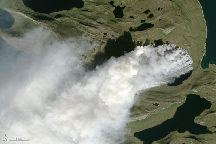 Satellietbeeld van de Groenlandse natuurbrand op 3 augustus 2017. De locatie van de brand is 67.87º N / 51.48º W, halverwege de westkant van de Groenlandse ijskap en de westkust. Bron: NASA.