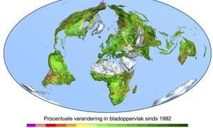 Figuur 1: Verandering in de bladoppervlakte-index (bladoppervlak/grondoppervlak) sinds 1982 op basis van satellietwaarnemingen, in procenten (bron: Boston University/R. Myneni).