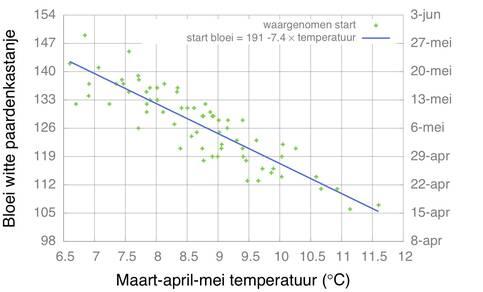 Relatie bloeitijd witte paardenkastanje en voorjaarstemperatuur