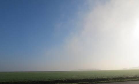 Figuur 1. Zeevlam, een muur van mist. Foto: Jannes Wiersema.