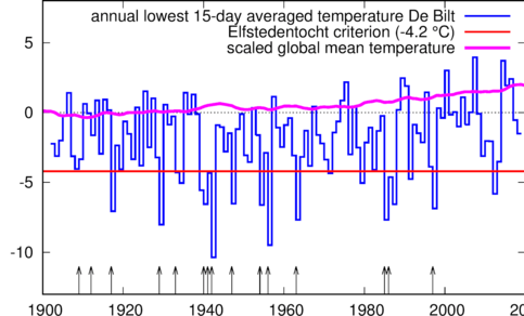 figure with lowest 15-day averaged daily mean temperature in De Bilt (blue), temperature criterion (red) and the scaled global mean temperature with a 4-year running mean (purple). The arrows indicate the years in which an Elfstedentocht was organised.