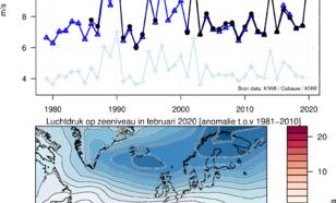Grafieken van gemiddelde windsnelheid in Cabauw op 80 m hoogte in februari; gemeten en gemodelleerd. De ERA5 heranalyse wind op 10 m hoogte boven Nederland is ook weergegeven. De luchtdruk op zeeniveau in februari 2020.
