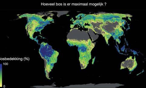 wereldkaart met maximaal mogelijke bosbedekking, alleen rekening houdend met klimaat en bodemsoort