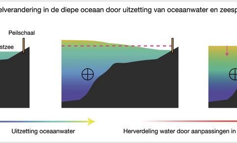 Samenhang zeespiegelvariaties diepe oceaan en aan de kust
