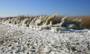 Maart was in 2013 de koudste maand in een kwart eeuw: door de harde tot stormachtige oostenwind en de vorst vormden zich langs onze kust bijzondere ijsvormen (foto: Jannes Wiersema)