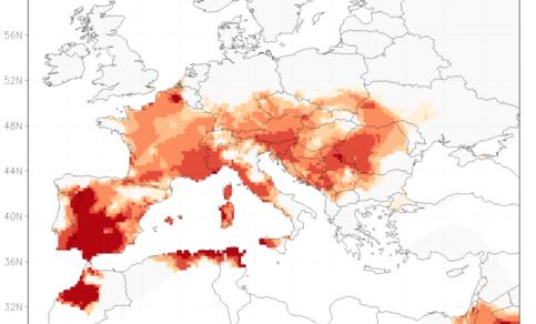 Figuur 2. Rangorde van de zomergemiddelde temperatuur van 2017 in de waarnemingen vanaf 1950. In de donkerrode gebieden was het de warmste zomer. Bron: E-OBS.