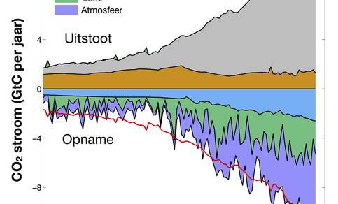 koolstofkringloop sinds 1900