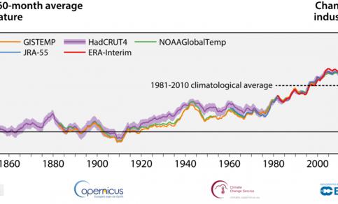 Figuur 2. Trend in globale opwarming (lucht op 2 m hoogte) in datasets van verschillende klimaatinstituten. Rood: ECMWF (Europees), geel en groen: NASA en NOAA (Amerikaans), paars: Met Office (Engeland), blauw: JMA (Japans). Bron: ECMWF, C3S.