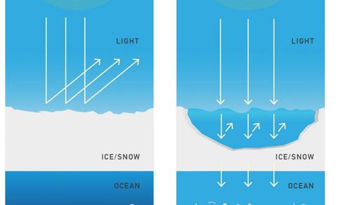 Figuur 2. Zee-ijsafsmelting leidt tot meer zonlicht in de oceaan en meer plankton. Bron: R. Bintanja.