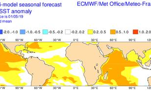 Grafiek van verwachte afwijking van de gemiddelde zeewatertemperatuur gedurende de maanden Augustus, September en Oktober.