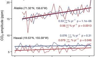 Figuur 3: De amplitude van de jaarlijkse variatie in CO2 in Hawaii en Alaska (bron: M. Forkel ea, Science, 351, 2016)