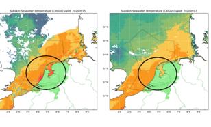 Kaart van temperatuur IJsselmeer tijdens en kort na de late hitteperiode half september. IJsselmeer koelt na inval koelere lucht sneller af dan de kustwateren.