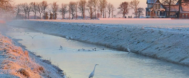 Koud winterweer